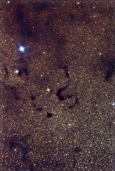 Dark Nebulae B78, B72 (Snake Nebula) and B74