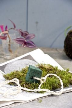 Wil je zelf graag de handen uit je mouwen steken deze zomer? Maak dan je eigen Kokedama's.