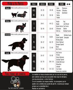 MIDE A TU PERRO...O GATO ...No sabes q talla es tu perro o gato....Dika Pets te trae la tabla de medidas para que sepas exactamente q tallita es tu peludo. Las medidas son en centimetros y corresponden a la marca DikaPets