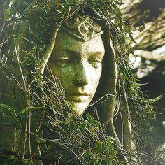The Elves of Mirkwood
