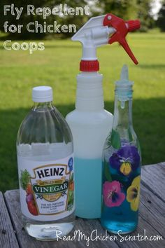 Simple Life, Simple Food... and Chickens -- Find simple old fashioned recipes, how to raise chickens, and more. DIY Fly Repellent for Coops