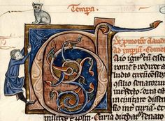 Rescuing the cat perched on top of initial (Dijon, BM, 568)