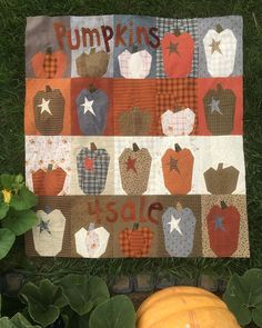 Pumpkins for Sale Kit and pattern by Janet Rae Nesbitt of One Sister Buggy Barn Pumpkin Quilt Crazy Jacks Pumpkins For Sale, Spring And Fall, Seasons, Kit, Quilts, Blanket, Floral, Outdoor Decor, Fabric