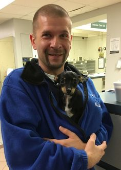 It's never fun when our pets have to have surgery, but knowing they are getting a little extra TLC - like missy Bitty did when she snuggled in the sweatshirt of our surgery technician Allen - can make it a little bit easier!  Bitty was visiting for her recheck after elbow surgery with Dr. Brian Beale in our Surgery department, and she's doing great!  #NationalPetWeek #GCVS #goingtheextramile