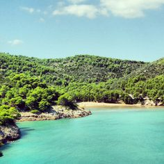 Baia di San Felice a Vieste del Gargano..! A San Felice bay in Vieste del Gargano..!! #gargano #puglia #mare #sea #blue #esperienzegargano #mygarganoexperience #travel #vacanze #travelblogger#natura #nature #italia #italy #meraviglienaturali #tagsta_nature #turismoer #turista #treescollection #tourism #worldcapture #costadelgargano