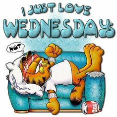 Wednesday Happy Wednesday, Happy Mondays, Back To Schools, Hump Day, The Weekend, Greeting Cards, Garfield, Love Quotes,