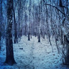 Продолжаем серию. На сей раз — #cold #autumn #russia #moscow - @dgotskin- #webstagram