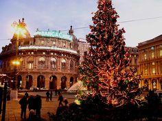 L'albero di Natale in Piazza De Ferrari a Genova