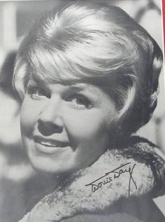 Welcome to Heck Yeah Doris Day! Sit down, take a look around, and discover why Doris has enamored audiences for over 70 years. Hollywood Stars, Classic Hollywood, Maureen O'hara, She Is Gorgeous, Beautiful, April 3, Female Stars, Here Kitty Kitty, Girl Next Door