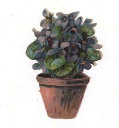 Victorian Die Cut Scrap A Pot of Violets