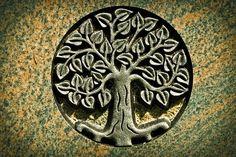 Bylinky po šamansku | Centrum alternativního rozvoje
