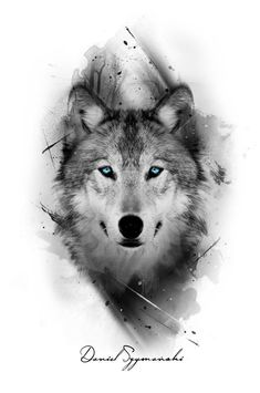 I really like the color only being in the eyes grey tattoo, wolf eye tattoo Wolf Tattoos Men, Animal Tattoos, Tattoo Wolf, Inca Tattoo, Wolf Tattoo On Back, Wolf Tattoo Sleeve, Arrow Tattoo, Owl Tattoos, Wolf Tattoo Design