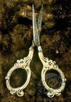 antique scissors. I have this scissor.