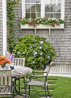 Careful pruning helps to orchestrate the succession of blooms and to maintain a neat appearance. This colorful window box display includes 'Cherry Pink' million bells, white New Guinea impatiens, and blue lobelia. Nantucket Style Homes, Nantucket Cottage, Cozy Cottage, Window Box Flowers, Window Boxes, Lawn Chairs, Outdoor Living, Outdoor Decor, Outdoor Rooms