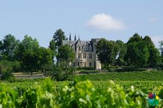 Château à Saint-Emilion # Saint-Emilion #Gironde #Aquitaine