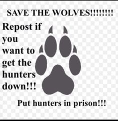 3957aaf53993213a9634e33fa90abb0d--wolf-quotes-animal-quotes.jpg (595×611)