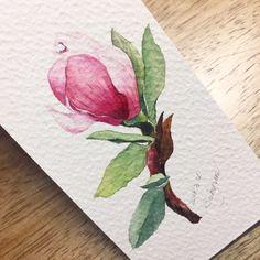 봄이온다고 한동안 목련을 좀 그렸다^^ 작년에 이맘때 그렸던 목련보다는 그래도 발전한듯한 그림이라서 감...