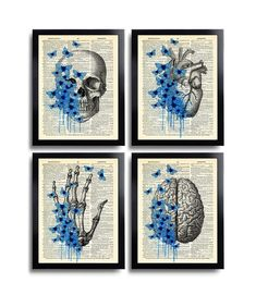 Anatomical Set Anatomy Print Set of 4 Medical Wall Art Dictionary Art Prints Gifts Anatomical Gift Set of Posters Vintage Anatomy Skull 629 Retro Poster, Vintage Posters, Human Anatomy Art, Cabinet Medical, Gcse Art Sketchbook, Book Page Art, Medical Art, Halloween Painting, Dictionary Art