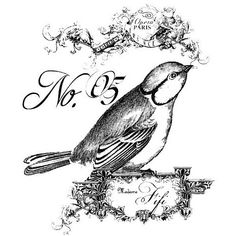 Sweet bird graphic perfect for transferring onto a painted surface. Have it printed in reverse with a Laser printer and use Artisan Enhancements Transfer Gel. Vintage Labels, Vintage Ephemera, Vintage Cards, Printable Art, Printables, French Typography, Foto Transfer, Transfer Printing, Heat Transfer