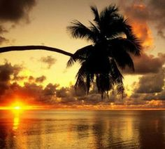 More popular #beaches in #Baracoa #Cuba are: Duaba Honey #Beach and further west, Playa Maguana and Playa Nibujón