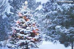 Прогноз погоды от синоптиков на Новый год 2018 (1 января) и новогодние праздники 2018 года - http://godzagodom.com/pogoda-na-novyj-god-2018-dlya-rossii/