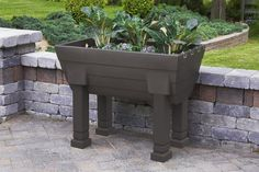 Garden Wizard Elevated Garden - This self-watering raised bed garden comes in three colors: Oak, Khaki and Green. Elevated Planter Box, Raised Garden Planters, Elevated Garden Beds, Raised Garden Beds, Raised Bed, Tall Planters, Trough Planters, Garden Stand, Garden Boxes