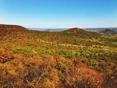 Today, Pocket Ranger posted my trip report for one of my favorite hikes in Pennsylvania, Pulpit Rocks and the Pinnacle. There's still time to catch fall colors up there! Hiking Spots, Hiking Trails, Thru Hiking, Appalachian Trail, Winter Travel, Pilgrimage, West Virginia, Ranger, Pennsylvania