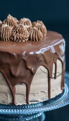 Ultimate Chocolate and Nutella Cake – three almost brownie like layers filled and frosted with whipped Nutella and smothered with chocolate fudge glaze.