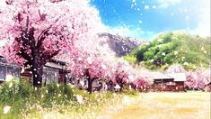 Anime Backgrounds Wallpapers, Anime Scenery Wallpaper, Pink Aesthetic, Aesthetic Anime, Anime Cherry Blossom, Anime Flower, Secret Garden Coloring Book, Anime Life, I Love Anime