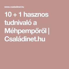 10 + 1 hasznos tudnivaló a Méhpempőről | Családinet.hu