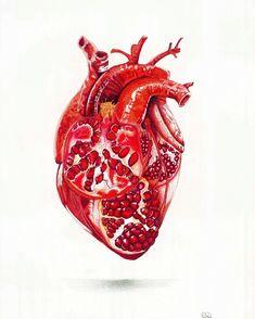 Pomegranate Heart. Pointillism, stippling, tattoo art, Modern art, anatomy art, botanical art, red heart, illustration, drawing, sketch