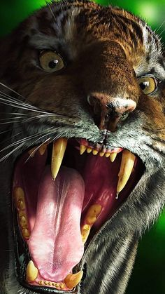 Evil Clown Nightmare the evil clown Full HD Wallpapers p Tiger Skin, Tiger Face, Tiger Wallpaper, Animal Wallpaper, Beautiful Cats, Animals Beautiful, Baby Animals, Cute Animals, Tiger Pictures
