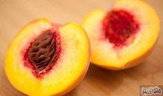 فوائد الخوخ والبرقوق لصحة الأنسان: تساعد الفاكهة كثيرًا على تعزيز صحة الإنسان والحفاظ على القلب، ومن أهم تلك الفاكهةالخوخوالبرقوق…
