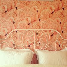 Flamingo wallpaper for guest room.