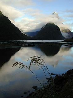 Amazing Clouds in Milford Sound, New Zealand #travel #beautiful http://maupintour.com/tour/best-south-pacific-tour