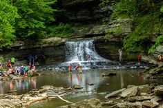 McCormick's Creek – Spencer | Campsite Ideas Every Families Should Visit | http://survivallife.com/best-campgrounds-in-indiana/