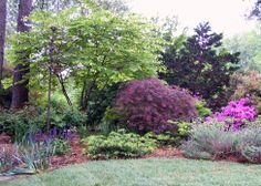 backyard landscaping with trees | Front Yard Landscaping Ideas 1946x1390 Personal Edens For The Love Of ...