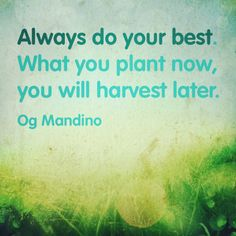 Always do your best. What you plant now will harvest later. - Og Mandino #motivation #rocktheinvestor.com