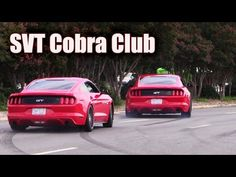 Mustangs leaving SVT Cobra Club ★ Parkway Ford Show 2015 (2 of 3) - YouTube