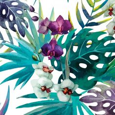 Poster - Tropic