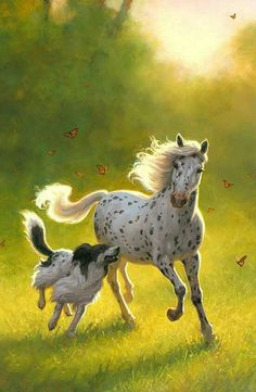 Doesn't get any better than this.An Appaloosa, Border Collie and Butterflies.A beautiful sight on a Summer Southern afternoon! Pretty Horses, Horse Love, Beautiful Horses, Animals Beautiful, Horses And Dogs, Animals And Pets, Cute Animals, Mundo Animal, Tier Fotos
