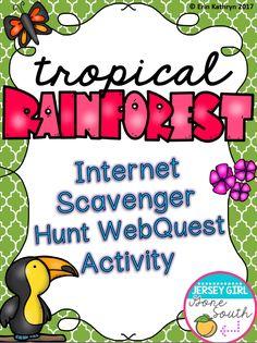 335 Best Rainforest Lesson Plans images | Rainforest theme ...