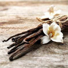 Java beheimatet eine einzigartige Orchideenart, an der Vanilleschoten mit besonders intensivem Duft wachsen. Entdecke den einzigartigen und unwiderstehlichen Geschmack der Java-Vanille. Zusammen mit unserer cremigen Rahmglace entfaltet sie ihre ganze Intensität für ein abenteuerliches Geschmackserlebnis. 🍨 . L'île de Java renferme une espèce d'orchidée singulière, qui produit des gousses de vanille au parfum intense. Découvre le goût unique et irrésistible de la vanille de l'île de… Bobby Pins, Hair Accessories, Brooch, Unique, Beauty, Instagram, Jewelry, Vanilla, Jewels