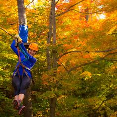 Just 15 minutes from Ottawa, Camp Fortune is your ziplining Ottawa destination! Offering advanced zip line fun for adults of all ages. Zipline Adventure, Canada, Plein Air, Ottawa, Skiing, Camping, Explore, Park, Ladders