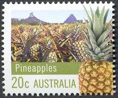 Pineapple Farming in Australia