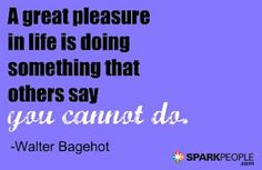A great pleasure in life is doing something that other people say you cannot do. via @SparkPeople