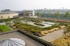 The magnificent Roof Gardens of the European Patent Office, Rijswijk, The Nether. The magnificent Outdoor Rooms, Outdoor Furniture, Outdoor Decor, Patent Office, Garden Leave, Garden Bridge, Landscape Architecture, Roof Gardens, Earthy