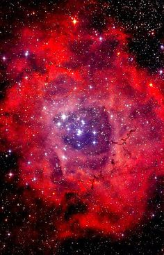 #RosetteNebula - The Rosette Nebula (also known as Caldwell 49) is a large, circular H II region located near one end of a giant molecular cloud in theMonoceros region of the Milky Way Galaxy. The open cluster NGC 2244 (Caldwell 50) is closely associated with the nebulosity, thestars of the cluster having been formed from the nebula's matter. Distance: 5,200 ly