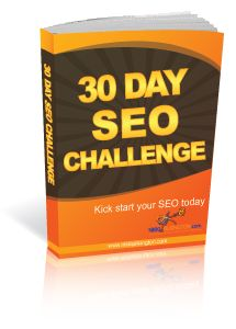 30 Day SEO Challenge Ebook Review