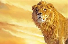 Framed Print - Golden Yellow Lion (Picture Poster Animal Art Tiger Cub Pride)   eBay